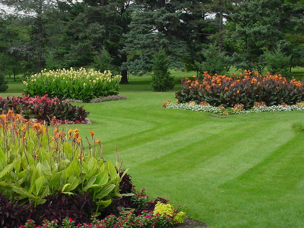 lawn_and_landscape